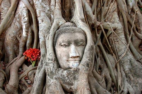 Thaimaan parhaat