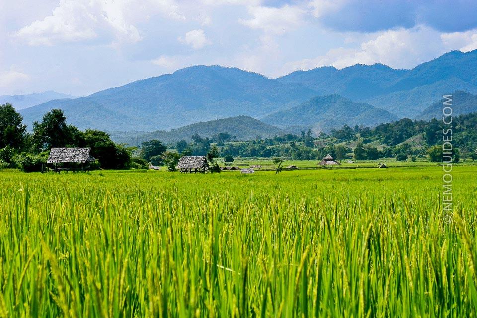 Pohjois-Thaimaa Pai